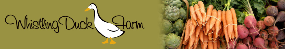 cropped-header_farm.png